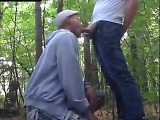 Park wiley in hardcore interracial clip 2