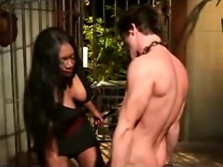 Black hottie fucks her slave in the ass with a strapon